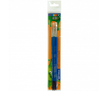Set of 3 x brushes SMART ZB.6965BF-1