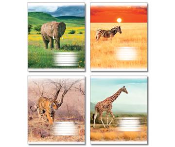 Зошит 60 аркушів клітинка КАРТОН 52166