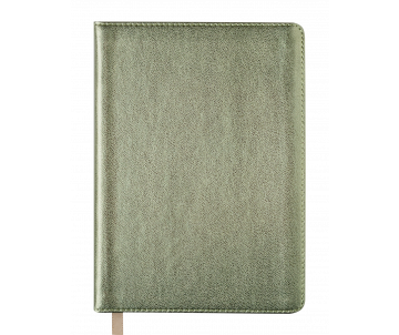Diary A6 METALLIC gold BM.2613-23