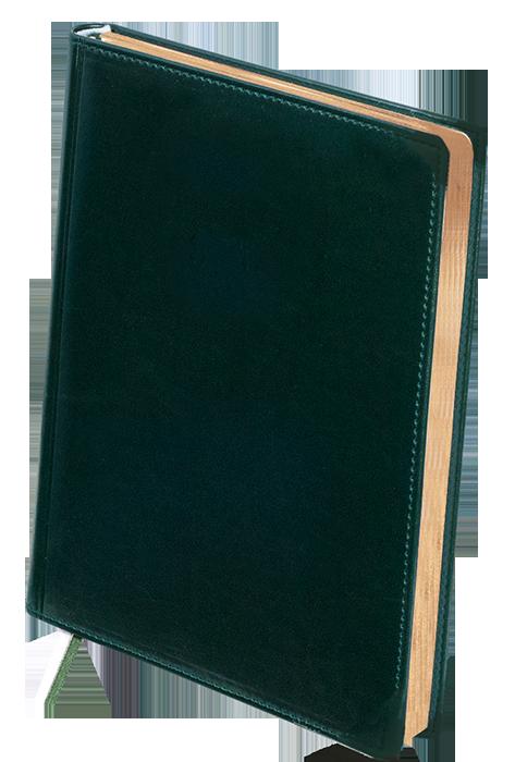 Недатований діловий щоденник BOSS А4 зелений фото